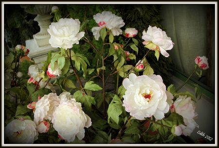Fleurs en tissu 1