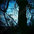 Quercus © ceciledecorniquet.com