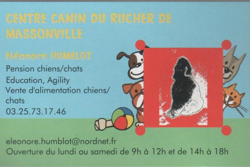 Centre canin du rucher