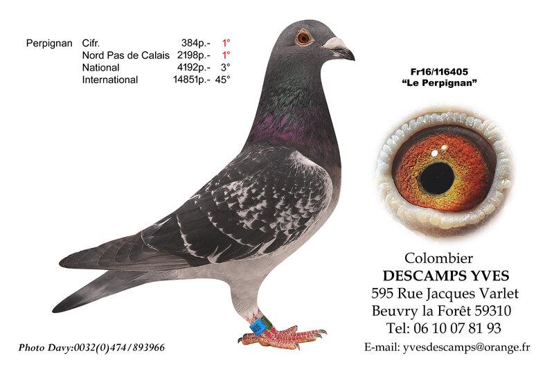 DESCAMPS YVES 405-16