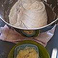 Gâteau Neige aux blancs d'oeufs 009