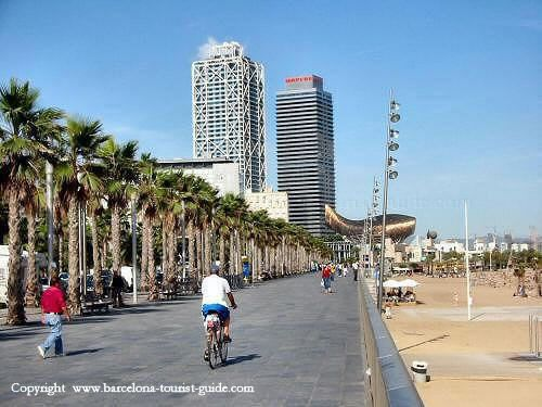 beach-barceloneta-16_jpg