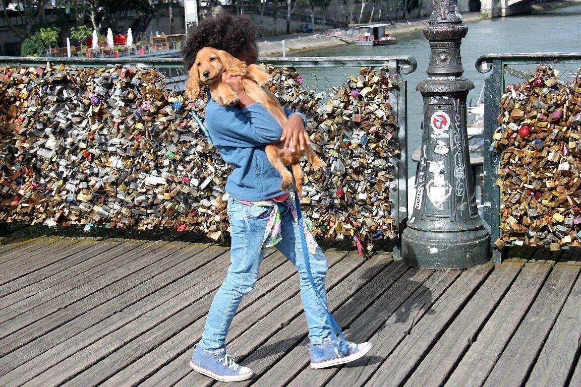 Enfance, chien, cadenas Pont des arts_5471