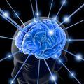 La réalité n'est qu'ne perception de l'esprit elle n'existe pas materiellement.