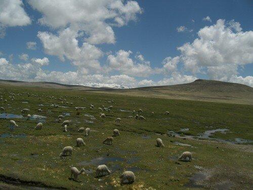 Sur la route, vers Arequipa