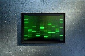 DNA11_3
