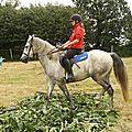 équitation de pleine nature - rallye équestre (109)
