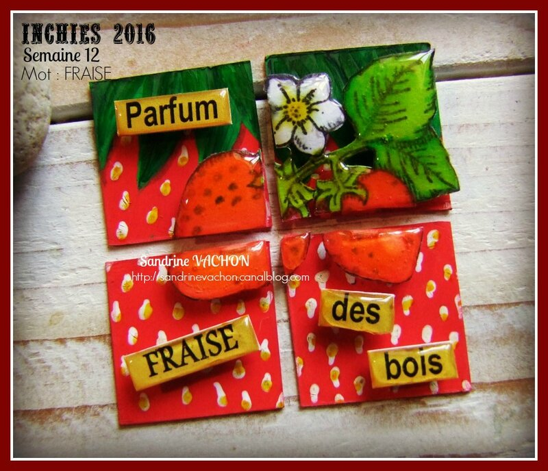 INCHIES 2016 Sandrine VACHON (DT)
