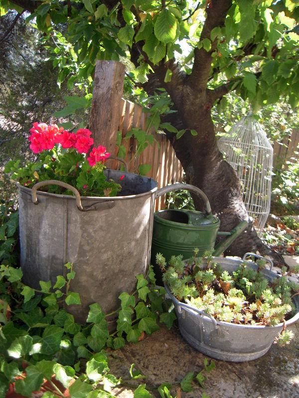 r cup photo de cot jardin reve de souris. Black Bedroom Furniture Sets. Home Design Ideas