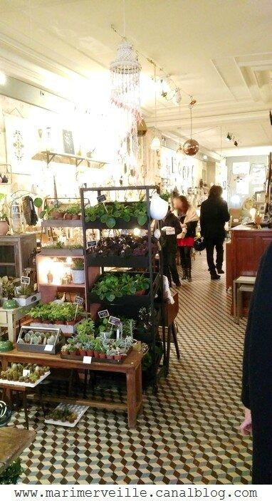 boutique les fleurs 2jpg