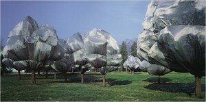 christo_und_jeanne_claude_wrapped_trees_nr11_2407806