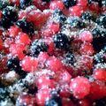 couvrir de sucre roux
