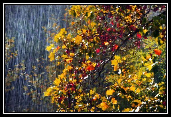 pluie_d_automne_2
