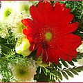 bouquetjosette2
