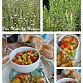 Escalope de poulet à la plancha et salade de pois chiches1
