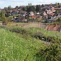 18 - Ruelle Baronnette - Panorama -20130509_69
