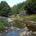 2009 08 27 La source de la Loire au Pied du Gerbier de Jonc