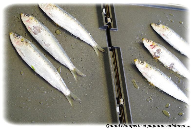 sardines grillées et poêlée de pommes de terre primeur-5448