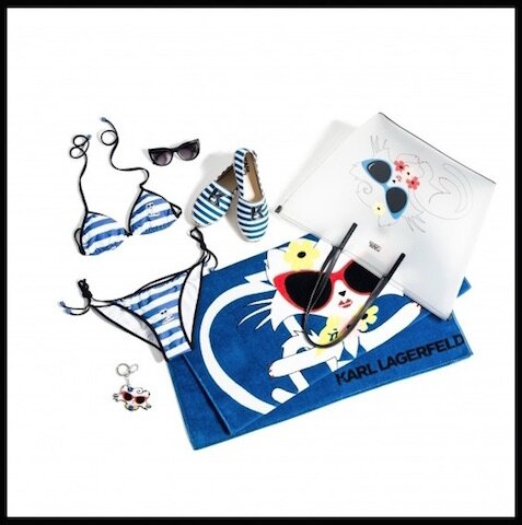karl lagerfeld choupette at the beach 1