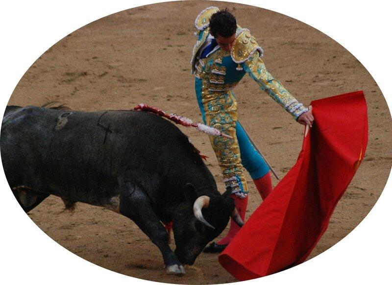 Un taureau attaque un tissu rouge pendant une corrida