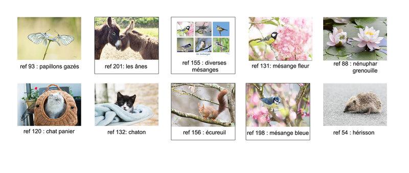 cartes fleurs2