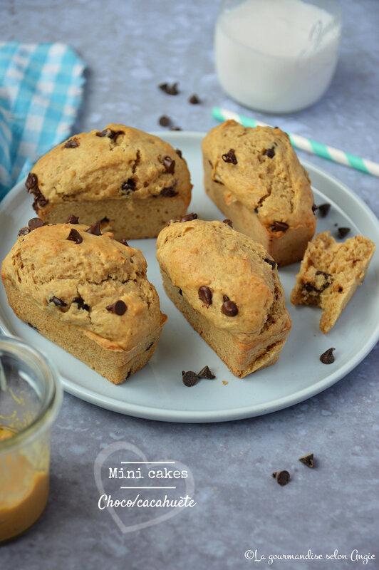 mini cakes chocolat cacahuètes vegan sans oeufs sans lactose (1)