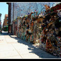 2008-07-19 - WE 16 - Philadelphia (South Street) 006
