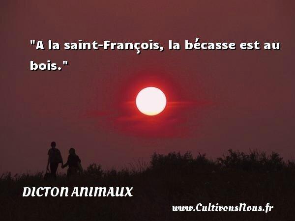 Dicton François