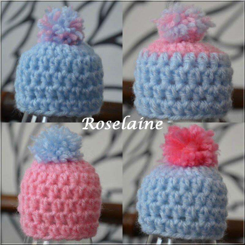 Roselaine 67 Bonnet Innocent 2015