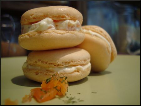 macaron_saumon_fum__ricotta