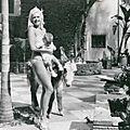 jayne_pink_palace-outside_animal-01-2