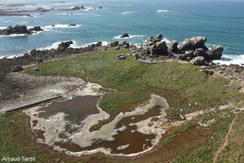 00312 Plouguerneau - Le Pays des Abers - Vue sur l'Ile Vierge du haut du phare blog