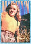 card_marilyn_serie1_num64
