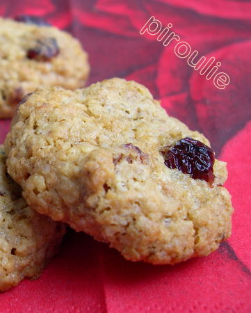 cookies_flocons_avoine__5_
