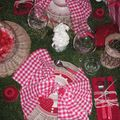 table picnic 012
