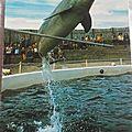 Port Barcares - zoo marin