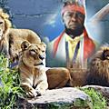 Kongo dieto 2981 : le lundi 7 aout soulevement de la jeunesse congolaise !