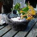 Sur la table du jardinet...