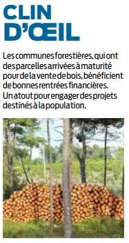 2019 06 20 SO Commune forestière