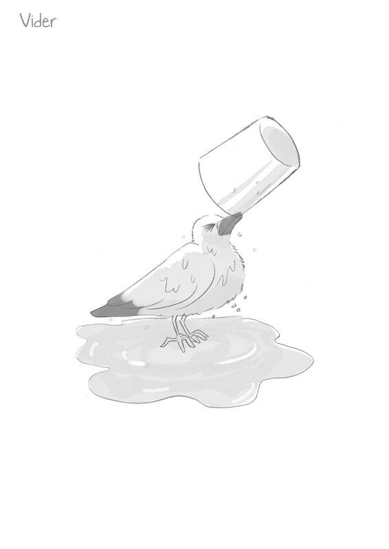 Pigeon saga vider 900px