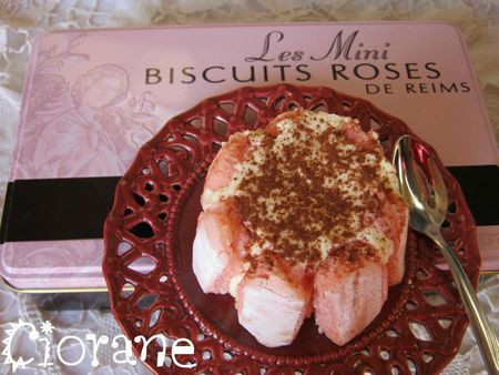 charlotte-biscuit-rose