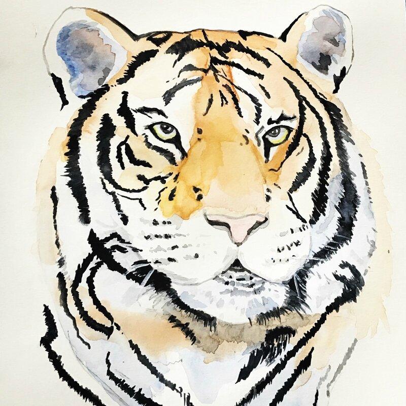 le tigre-aquarelle-creativ'mood