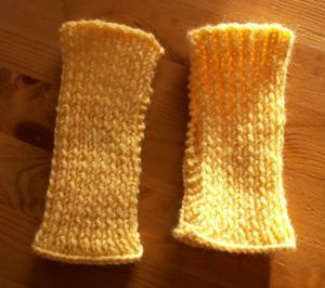 tricot_2009_01_mitaines_MA_1