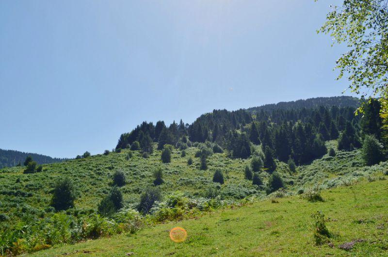 Les vertes et hautes prairies de Barlagne...