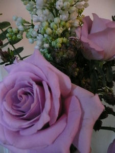 fleurs_009