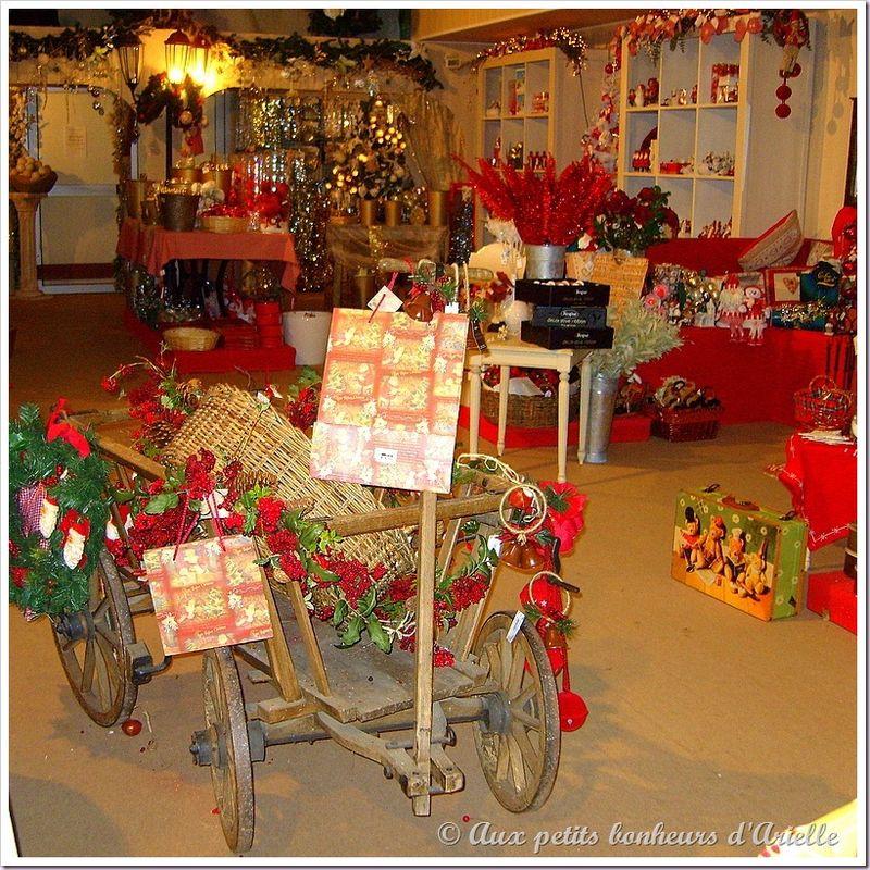Magie de Noël (3)