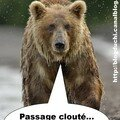 ours cloute
