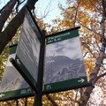 Mont royal 21oct 087