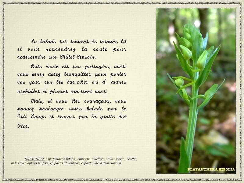 chemins images