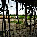 saumur avril 2014 061
